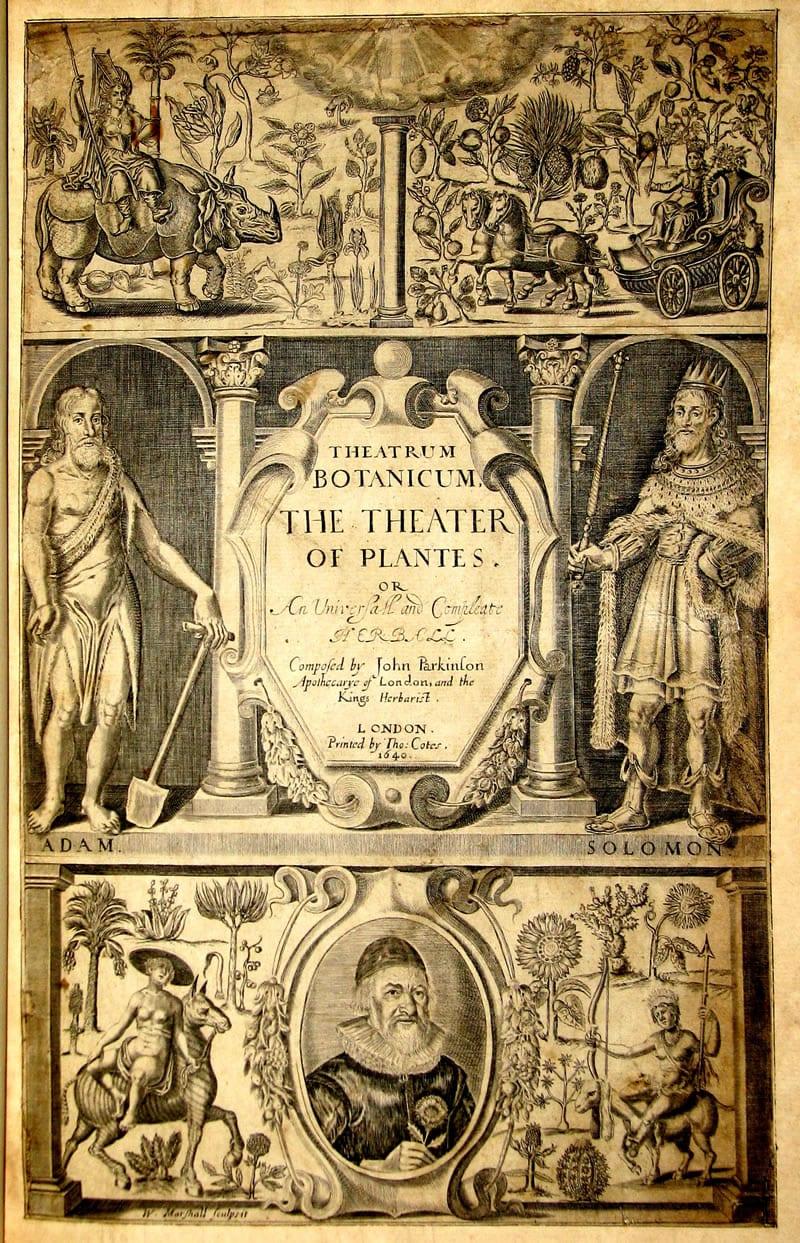 Theatrum Botanicum or The Theater of Plantes by John Parkinson, London, 1640