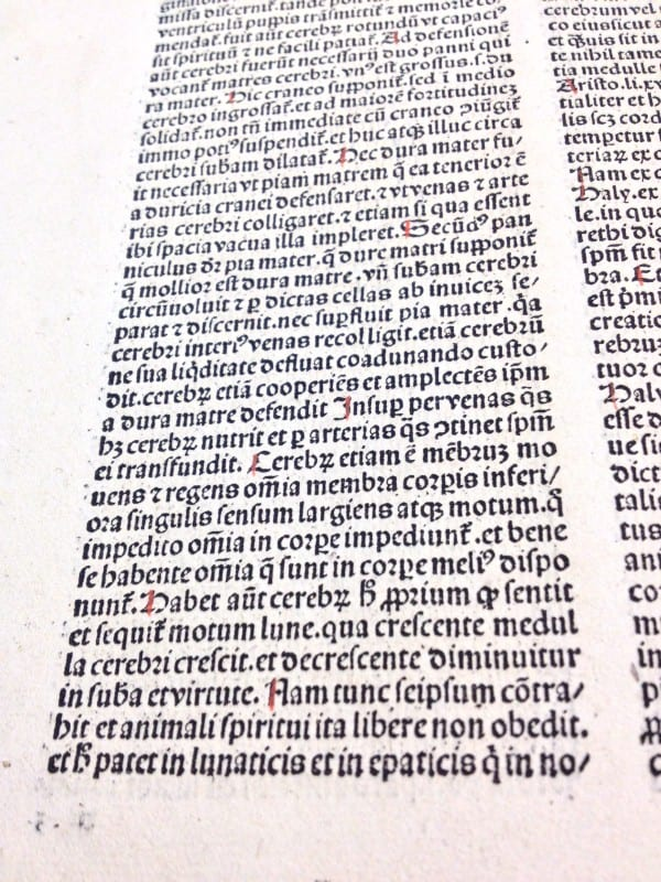 "Book V, Chapter III from ""De proprietatibus rerum"" (1490)"