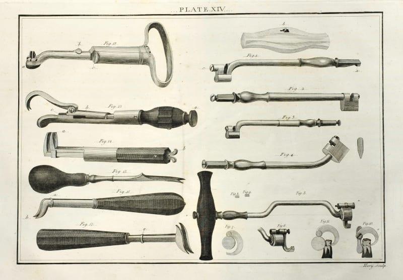Plate XIV from Savigny's Catalogue, 1798