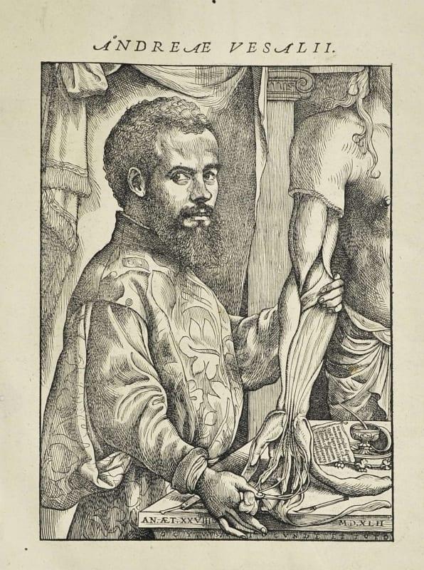 Woodcut of Andreas Vesalius from De Humani Corporis