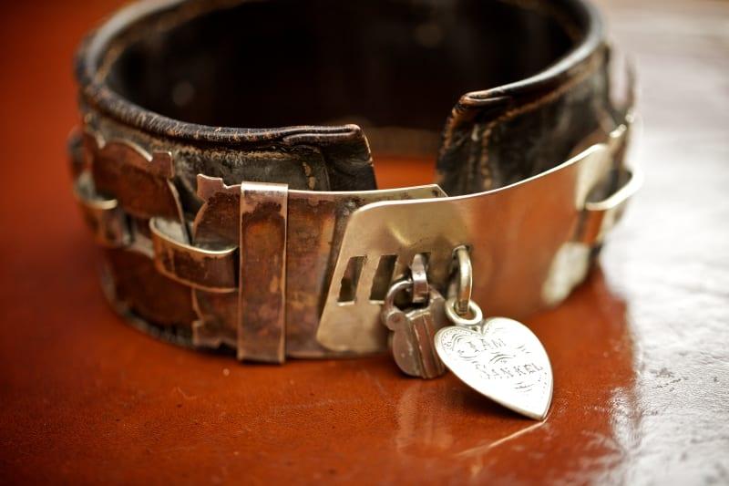 Dog collar worn by Sankel