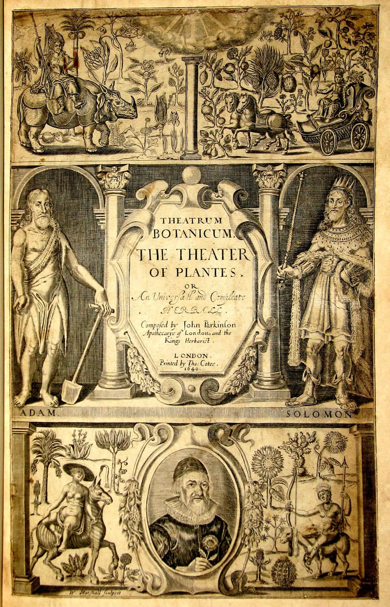 Theatrum Botanicum or The Theater of Plantes by John Parkinson, London, 1640