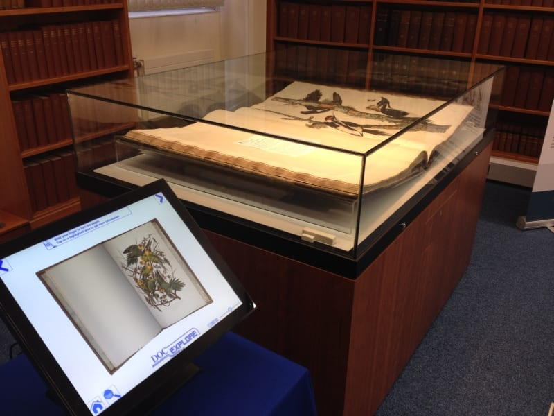 Our 'Birds of America' display in the Reading Room