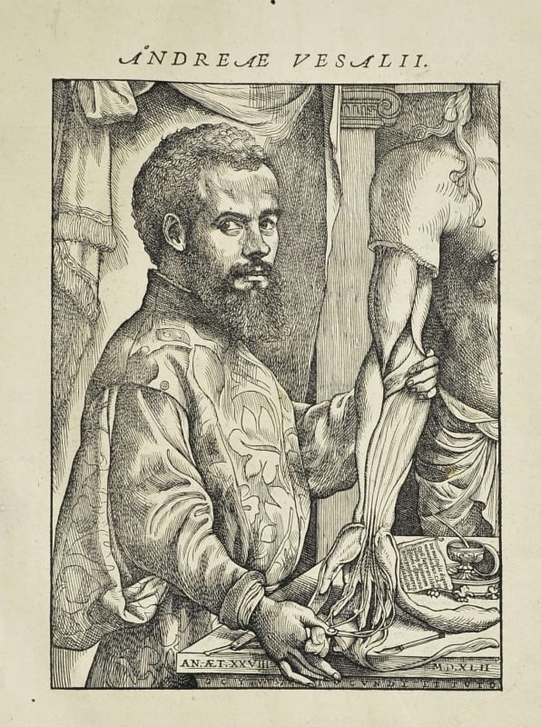 Woodcut of Andreas Vesalius from De Humani Corporis